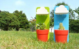 Rainy pot: El objeto que te ayudará a regar tus plantas