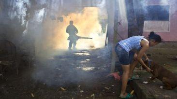En tres pasos: claves para entender mejor al dengue