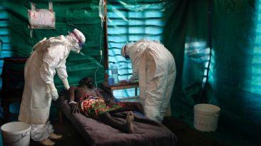 Siguiendo el rastro del ébola
