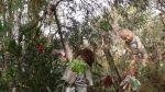 [FOTOS] Los museos más insólitos de Ciudad de México - Noticias de frida khalo