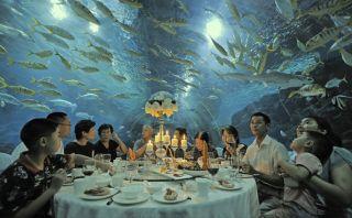 Cena bajo el mar: Turistas disfrutaron de esta comida en China
