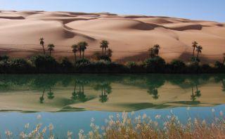 No son espejismos: Estos son los oasis más bonitos del mundo