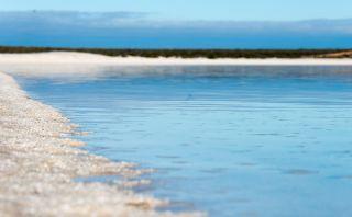 Shell Beach: Una de las playas más raras del mundo