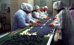 El Perú tendrá cinco agregados agrícolas en alrededor de un mes