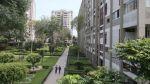 """El grupo Bancolombia colocó US$115 millones en """"bonos verdes"""" - Noticias de vernia pinto"""