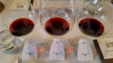 Un vino ícono que bordea los 30 años