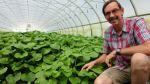 ¿Cuál es la planta más difícil de cultivar del mundo? - Noticias de cierre de negocios