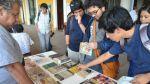 Este domingo celebrarán el Día de Bibliodiversidad - Noticias de diversidad cultural