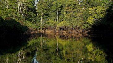 Las Áreas Naturales Protegidas ante el cambio climático en Perú