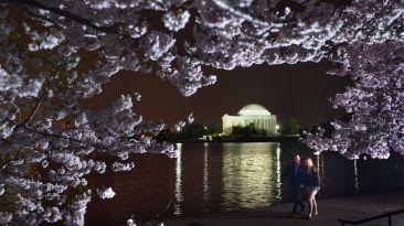 Llegó la primavera: Siete destinos para disfrutarla al máximo
