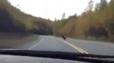 VIDEO: Estrella su auto tras correr con una moto
