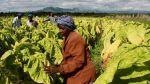 ¿Por qué el cambio climático afecta más a las mujeres? - Noticias de inundaciones
