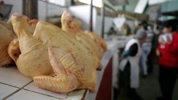 Precio mayorista del pollo se desploma hasta S/2,80 el kilo
