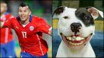 Con esta imagen Gary Medel bromeó sobre la perdida de diente - Noticias de perú vs. chile