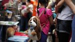La tradicional bendición de mascotas tuvo gran acogida [Fotos] - Noticias de san francisco