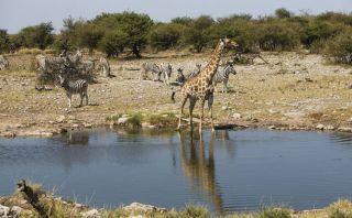 Los mejores destinos para viajar en el 2015 por Lonely Planet