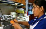 El 50% de trabajadoras del hogar tendrá seguro social en 2017