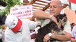 Minsa vacunará a perros contra la rabia este sábado y domingo - Noticias de campaña de vacunación