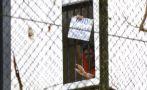 Venezuela: Leopoldo López es mantenido aislado en prisión
