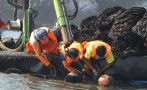 Envíos de pesca no tradicional sumaron US$547,9 mlls. a junio