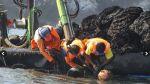 Envíos de pesca no tradicional sumaron US$547,9 mlls. a junio - Noticias de exportacion de harina de pescado