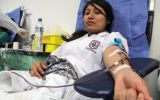 Crearán directorio virtual con nombres de donantes de sangre
