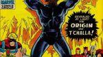 Black Panther: 10 cosas que debes saber sobre este héroe - Noticias de meteorito