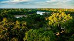 Riqueza natural: Descubre la Reserva Nacional Tambopata - Noticias de tambopata