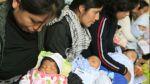 Seguro gratuito para niños se aplicará de forma gradual en 2015 - Noticias de pedro grillo
