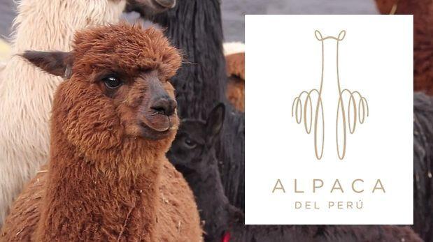 Lanzan marca Alpaca Perú para posicionar su fibra en el mundo