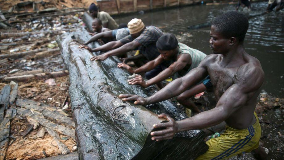 La grave explotación forestal que se registra en Nigeria