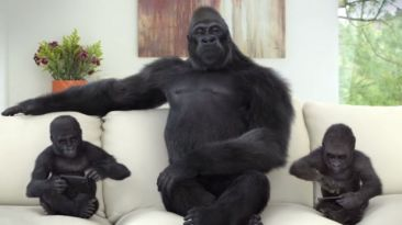 Gorilla Glass 4: Nueva generación de pantallas resistentes