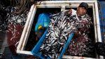 Decomisan toneladas de anchoveta que era transportada sin hielo - Noticias de