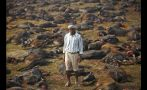 Nepal: El ritual en el que miles de animales son sacrificados