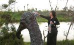 Los gallinazos de Cristina Planas toman los Pantanos de Villa