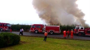 Incendio en pantanos de Villa: bomberos rescataron a un herido
