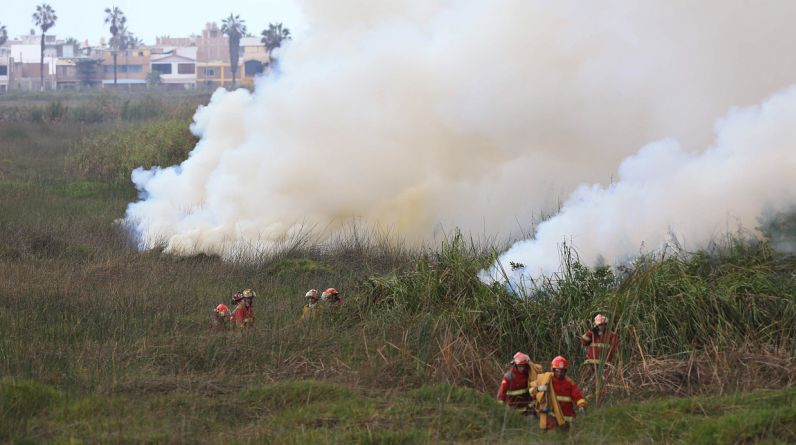 Un incendio consume esta mañana una zona de carrizales de los pantanos de Villa, en Chorrillos. (Foto: El Comercio / Lino Chipana)