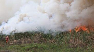 Incendio en pantanos de Villa fue controlado luego de 11 horas