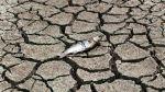 El clima es asunto de dioses, por Vito Verna - Noticias de contaminación