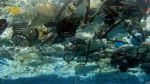 Los océanos tienen 275.000 toneladas de plásticos - Noticias de contaminación