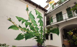 La mala hierba se adueña de la ciudad en estos hermosos murales