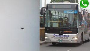 Vía WhatsApp: cucarachas invaden buses del Metropolitano