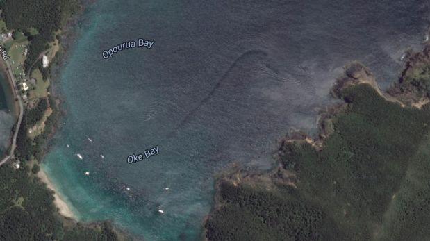 ¿Google Maps encontró un monstruo marino en Nueva Zelanda?