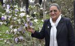 """""""Las plantas medicinales sufrirán por el cambio climático"""""""