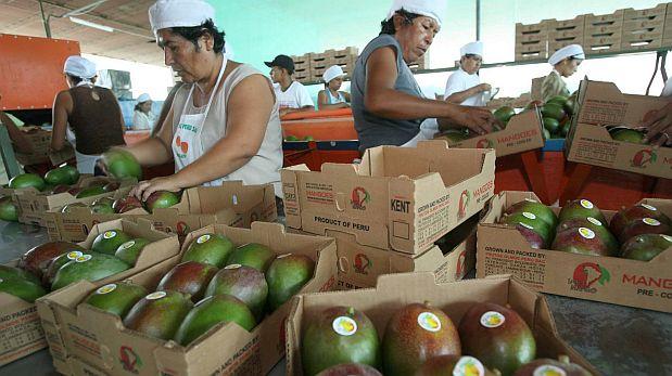 Ghezzi: Perú liderará la agroexportación mundial en cinco años