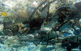 Hay unas 269.000 toneladas de plástico flotando en los océanos