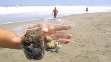 Doce playas del Perú no son saludables y tres están en Lima