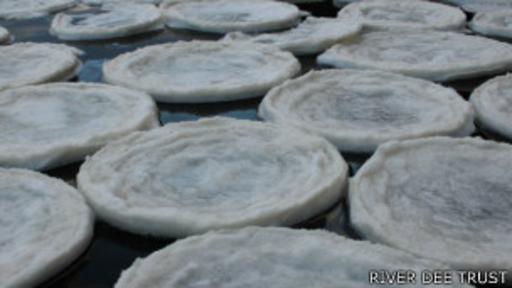 Según el Centro Nacional de Nieve y Hielo de EE.UU. pueden formarse discos de hasta metros de diámetro.