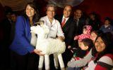 Internas de Santa Mónica donan juguetes para niños en Navidad