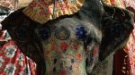 La cruda realidad de los animales sagrados en India - Noticias de accidentes